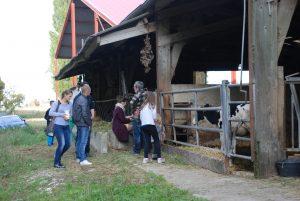 Visite de la ferme de Beaulieu Balade du goût 2016